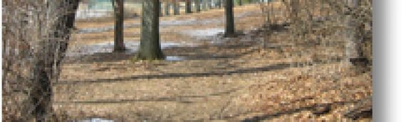 Endicott County Park