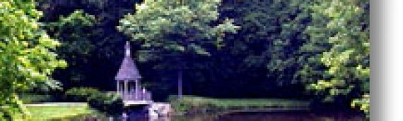 Hellebush Park